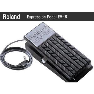 Roland:エクスプレッション・ペダル EV-5■ローランド:エクスプレッションペダル|merry-net