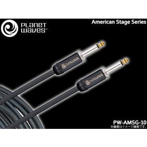PlanetWaves ギターケーブル PW-AMSG-10 10ft./3.04m S-S プラネットウェイヴス シールド merry-net