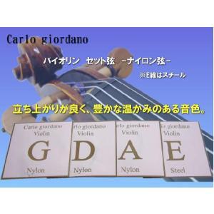 バイオリン弦 ナイロン弦 セット カルロジョルダーノ VNS-260 1/2サイズ