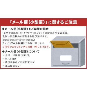 ギフトラッピング プレゼント包装【単品購入不可】|merry-net|07