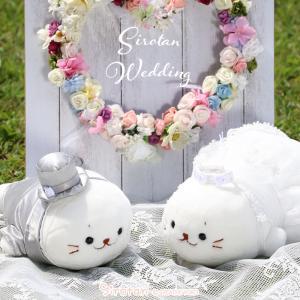 結婚式のウェルカムドールに最適な新郎新婦のセット販売です。 結婚式の御祝いやプレゼントにもおすすめで...