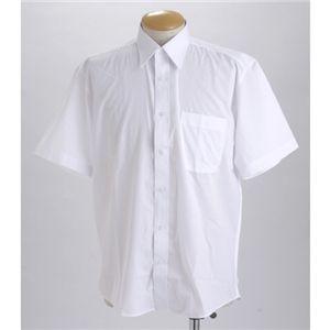 ブラック & ホワイト ワイシャツ2枚セット 半袖 LL 〔 2点お得セット 〕