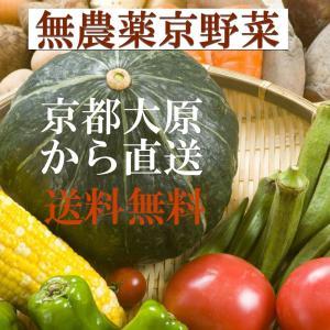 送料無料 お試し野菜セット 農薬化学肥料不使用 京やさい詰め合わせ  京都大原の栄養満点の野菜