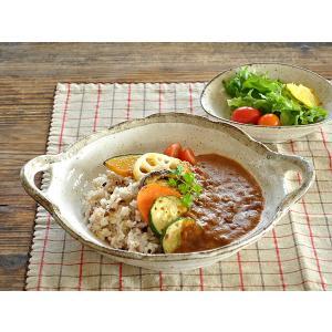 カレー皿 パスタ皿 おしゃれ 和食器 美濃焼 渕茶白唐津手付きパスタ皿