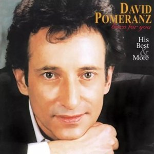 David Pomeranz / Born For You His Best & More (アナログ盤 / LP)|miamusicandbooks