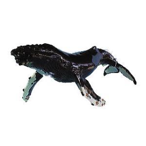 大洋産業貿易 モントレー水族館コレクション ザトウクジラ親 mic21