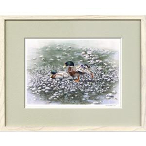 水彩画(鳥-花)永清文明 《2羽の鴨》大衣判(50.9×39.4)(ジクレー版画)|micbox-art-shop