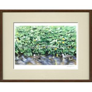 水彩画(鳥-花)永清文明 《夏の鴨》大衣判(50.9×39.4)(ジクレー版画)|micbox-art-shop