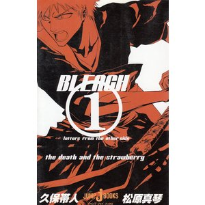 BLEACH 1letters from the other side / 久保帯人 松原真琴 中古...