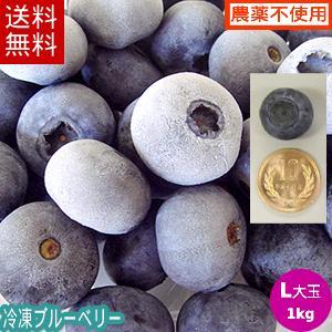 冷凍ブルーベリー1kg(Lサイズ)/岩手県遠野産、無農薬栽培