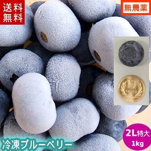 【送料無料】冷凍ブルーベリー1kg(2Lサイズ)/岩手県遠野産、無農薬栽培|michinoku-farm