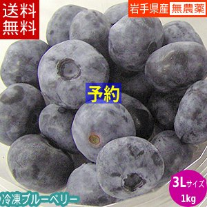 【送料無料】冷凍ブルーベリー1kg(3Lサイズ)/岩手県遠野産、無農薬栽培|michinoku-farm