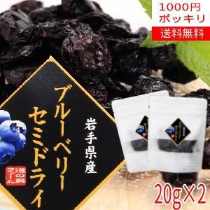 【送料無料】【1000円ポッキリ】ブルーベリーセミドライ20g×2袋/岩手県遠野産ブルーベリーをそのまま半乾燥!|michinoku-farm