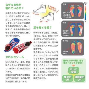 子供用 靴 丸五 MARUGO 祭りたび 足袋 NINTABI(にんたび) キッズスニーカー|michioshop|03