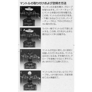 EPI(イーピーアイ) ランタンマントル3枚入 A-6301|micomema