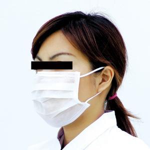 ミドリクリーンマスク K-204 耳掛け式(2枚重ね)100枚入り 個人向け ウイルス 花粉対策 midorianzen-com