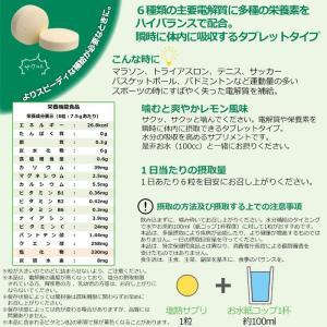 熱中症予防強化月間 送料無料 ミドリ安全 塩熱...の詳細画像1
