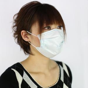 NTC ストレッチマスク 3層構造 プリーツタイプ ホワイト (お得用50枚入) 花粉対策 清掃 作業用|midorianzen-com