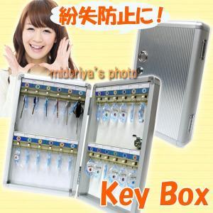鍵 鍵掛け キーボックス 壁フック 壁掛け 24本 収納 キーケース (c80678) 紛失 防止 安心 管理