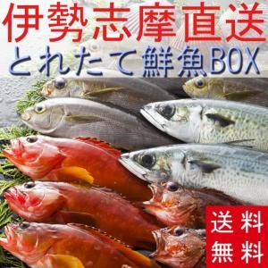 送料無料 とれたて鮮魚BOX2kg 三重県産 天然魚 詰め合わせ セット 刺身 産地直送