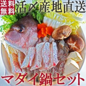 送料無料 産地直送 活〆マダイ鍋セット 約4〜5人前 海鮮鍋...
