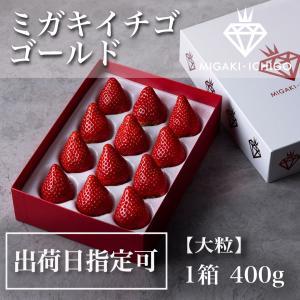 いちご ミガキイチゴ ゴールド(大粒いちご420g以上)|migaki-ichigo