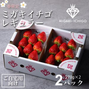 いちご ミガキイチゴ スタンダード(ご自宅用)4パック 275g以上×4|migaki-ichigo