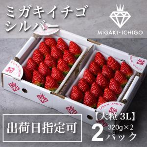 ミガキイチゴ シルバー(贈答、ご自宅用) 2パック 320g×2|migaki-ichigo