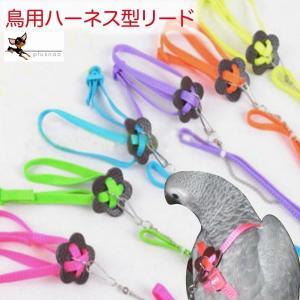 リード 鳥用 ペット用品 ハーネス 縄 ロープ 鳥 インコ 小動物 お出かけ 散歩 調節可能 カラフル 多色 マルチカラー