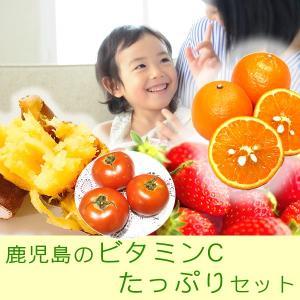 【送料無料!】タンカン・イチゴ・サツマイモ・トマト・米・水-鹿児島のビタミンCたっぷりセット mihime7