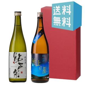 お中元 御中元 プレゼント ギフト 日本酒 鮎正宗 純米・千代の光 地上の星 720ml 2本セット|mikami-saketen
