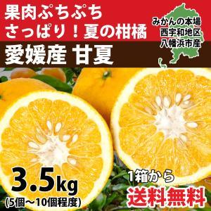 甘夏 あまなつ 愛媛産 訳あり 約4kg 送料無料|mikan-hana