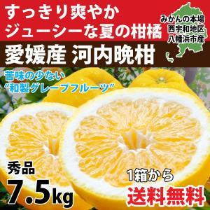 河内晩柑 ナダオレンジ 美生柑 秀品約7kg 愛媛産 和製グレープフルーツ|mikan-hana