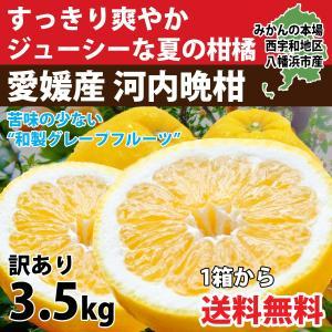 河内晩柑 みかん 和製 グレープフルーツ 訳あり 4kg 送料無料 愛媛産 10〜15個入り|mikan-hana