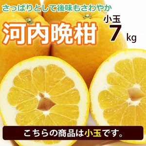 河内晩柑 みかん 和製 グレープフルーツ 小玉 7kg 送料無料 愛媛産 20〜30個入り|mikan-hana