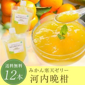 河内晩柑 寒天ゼリー 170g×12本 愛媛産 ギフト プレ...