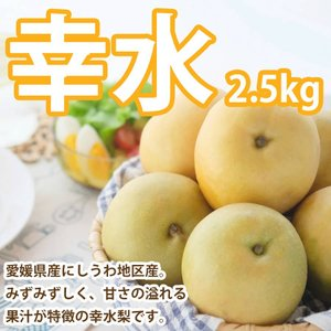 梨 幸水 愛媛産 2.5kg 送料無料|mikan-hana
