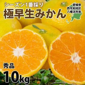 みかん 愛媛産 秀品 10kg 送料無料 3営業日以内に出荷|mikan-hana