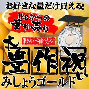 家計救済みんなの150円みしょうかん1kg  (美生柑・訳あり・不揃い)1kg150円で20kgまで...