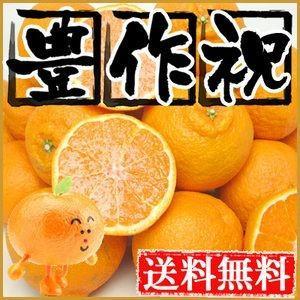 大豊作祝いデコみかん10kg【送料無料】訳あり・不揃い