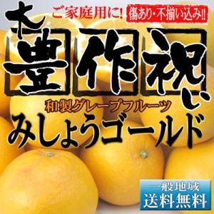 大豊作みしょうかん14kg【送料無料】【和製グレープフルーツ...