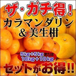 初夏においしいコンビ!ザ・ガチ得!訳ありカラ・マンダリン5kgと訳あり美生柑5kgの10kgセット【...