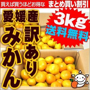 愛媛産訳ありみかん3kg×1箱 送料無料