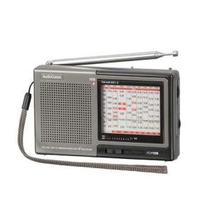 オーム電機 株・競馬ハンディたんぱラジオ RAD-H310N|mikannnnnn