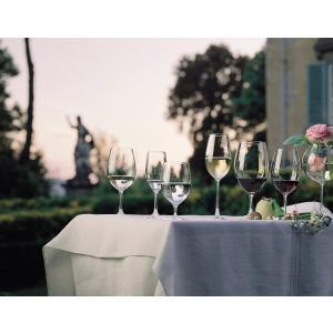 リーデル (RIEDEL)赤ワイングラス オヴァチュア マグナム 530ml 6408/90 2個入