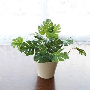 山久 プチグリーン アレンジ モンステラ グリーン 0910-8999 CT触媒加工 人工観葉植物 造花 mikannnnnn