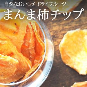 送料無料 1kg(50g×20袋) まんま柿チップ 無添加 保存料不使用 自然食品 国産 国内製造 和歌山県産 ドライフルーツ 保存食|mikannokai