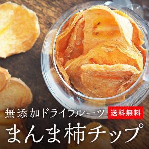 まんま柿チップお試しセット 100g(50g×2袋) 無添加 保存料不使用 自然食品 国産 国内製造 和歌山県産 ドライフルーツ 保存食|mikannokai