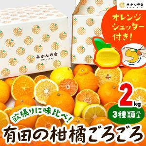 【付録付き】有田の柑橘ごろごろ゛3種以上  AB品 2kg 秀優品混合 柑橘 フルーツ 果物 季節限定 箱買 送料無料 贈り物 贈答用 プレゼント ご当地 mikannokai