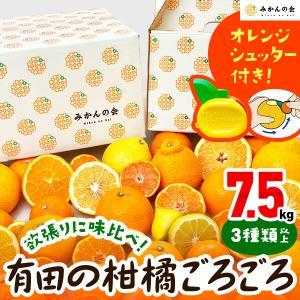 【付録付き】有田の柑橘ごろごろ゛3種以上  AB品 7.5kg 秀優品混合 柑橘 フルーツ 果物 季節限定 箱買 送料無料 贈り物 贈答用 プレゼント ご当地 mikannokai